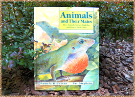 "Click here for a larger picture of the front, inside & back of the ""Animals and Their Mates"" book"