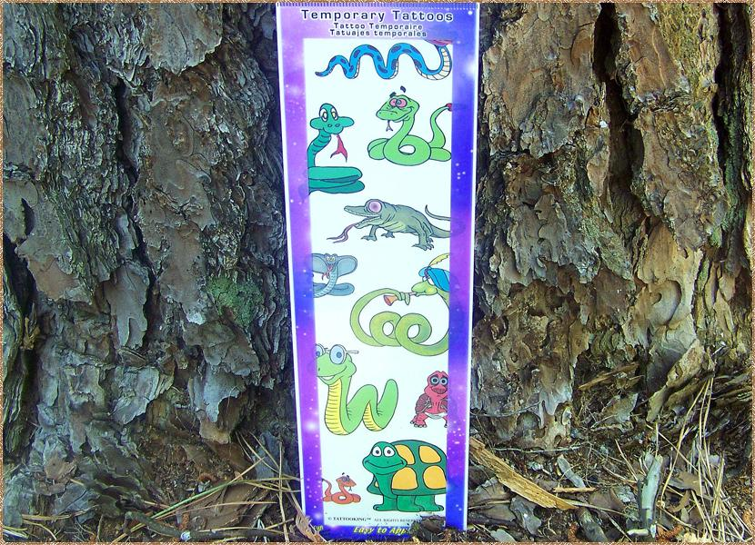 The Lizard Guys - Temporary tattoos for kid\'s kids/childrens ...